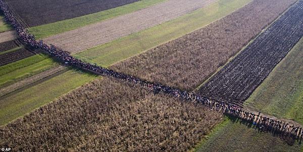 slovenia-rigonce-migrant