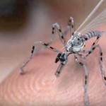 Insect-Spy-Drones