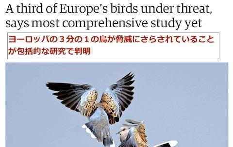 bird-extinction2