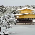 kinkaku-snow