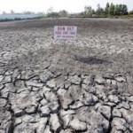 drought-2016b