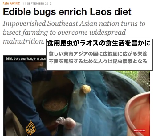 laos-bugs