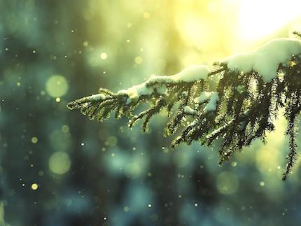 Xmas-Snow