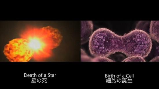 death-birth