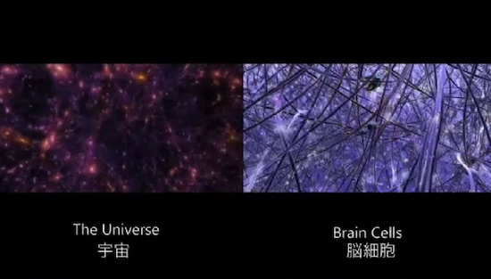 universe-brain-cell