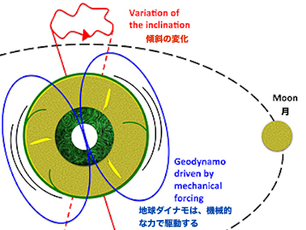 Geodynamo-driven