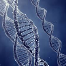 dna-from-space