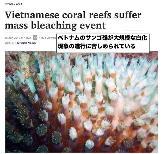 coral-bleaching-vietnam