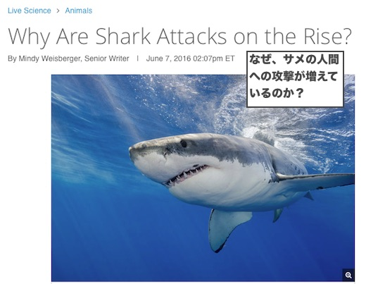 shark-attack-increase
