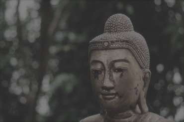 buddha-2016