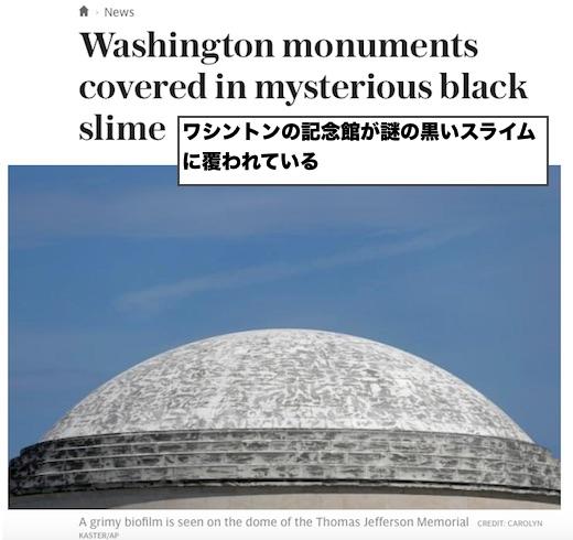 washinton-black-slime