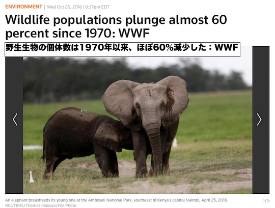animal-60-decline