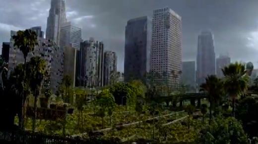 ewh-vegetation2