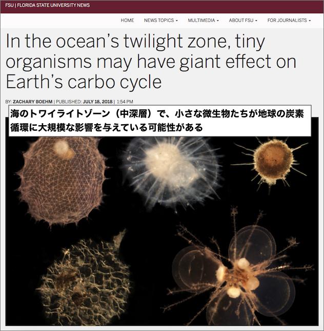 地球の二酸化炭素の循環が「深海の微生物によりコントロールされている可能性」が濃厚に。